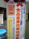 Komugiko_2